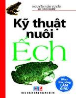 Kỹ thuật nuôi ếch hiệu quả cao