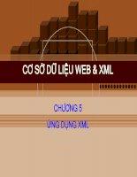 bài giảng cơ sở dữ liệu web và xml- chương 5 ứng dụng xml - gv. hồ văn phi