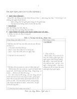 Ôn tập hè ngữ văn 8