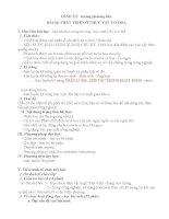 GIÁO ÁN SINH HỌC 11 NC BÀI 36 PHÁT TRIỂN Ở THỰC VẬT CÓ HOA