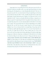GIẢI PHÁP NÂNG CAO CHẤT LƯỢNG TÍN DỤNG TẠI NGÂN HÀNG THƯƠNG MẠI CỔ PHẦN NAM Á CHI NHÁNH QUY NHƠN