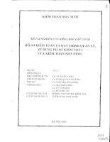 Hồ sơ kiểm toán và quy trình quản lý, sự dụng hồ sơ kiểm toán của kiểm toán Nhà Nước