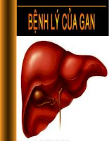 Bài giảng Bệnh lý của gan