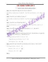 Các dạng bài tập toán lớp 5 (Ôn đội tuyển HS giỏi)