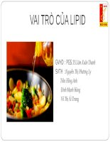 bài thuyết trình môn dinh dưỡng và an toàn thực phẩm vai trò của lipid