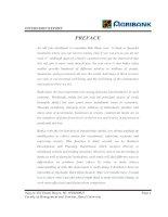 Internship report at agribank -   back khoa branch