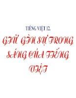 TIẾNG VIỆT 12: GIỮ GÌN SỰ TRONG SÁNG CỦA TIẾNG VIỆT