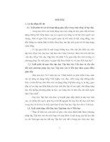 Dạy học tập làm văn ở tiểu học theo lý thuyết giao tiếp