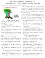 Bài 2: Vận chuyển các chất trong cây