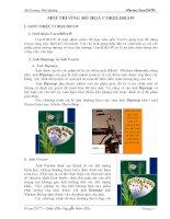 Giáo trình chi tiết về corel