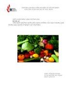Đề tài 33 tìm hiểu những biến đổi dinh dưỡng của rau trong quá trình bảo quản ở nhiệt độ thường