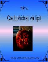 Bài 4. Cacbohidrat và lipit