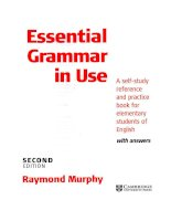 Essential Grammar in Use 2nd Edition