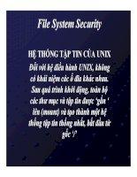 bài giảng tổng quan về linux chương 11 file system security