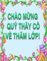 Bài 24- TTMT: Giới thiệu một số tranh dân gian Việt Nam ( ST)