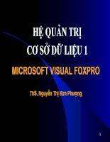 Giáo trình Visual foxpro  đầy đủ nhất
