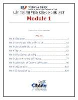 giáo trình lập trình viên công nghệ net module 1