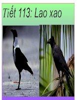 Tiết 113 -  Lao xao, lớp 6