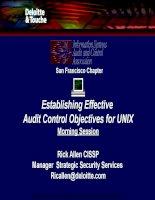 Establishing effective audit control objectives for UNIX