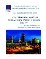 Báo cáo kiến tập nghành nghề quy trình công nghệ sản xuất amoniac tại nhà máy đạm Phú Mỹ