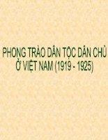 Phong trào dân tộc dân chủ ở việt nam (1919 - 1925)