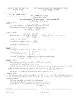 Đề HSG cấp tỉnh môn Toán 10-11
