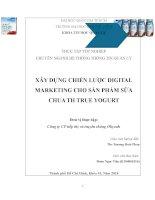 Xây dựng chiến dịch Digital marketing cho sản phẩm sữa chua TH True Yogurt