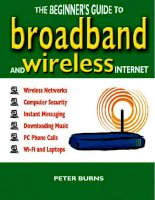 the beginner's guide to broadband and the wireless internet (2006)