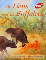 the lions and the buffaloes