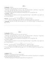 Tài liệu bồi dưỡng học sinh giỏi văn lớp 9