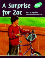 a surprise for zac