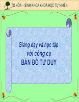 SU DUNG BAN DO TU DUY TRONG DAY HOC