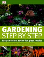gardening step by step a