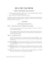 Các mẫu quy chế tài chính dành cho doanh nghiệp