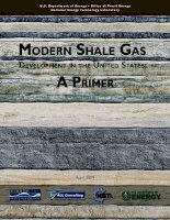US shale gas industry primer   US department of energy (2009)