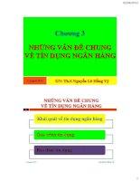 bài giảng nghiệp vụ ngân hàng chương 3 những vấn đề chung về tín dụng ngân hàng - ths.nguyễn lê hồng vỹ