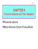 bài giảng chapter 8 financial options and their valuation