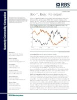 commodities primer Boom, Bust, Re-adjust rbs (2009)