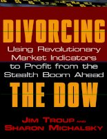 divorcing the dow - using revolutionary market indicators to profit from the stealth boom ahead