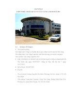 Tiểu luận quản trị tài chính công ty cổ phần đại lý giao nhận vận tải xếp dỡ tân cảng