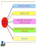 phân tích hoạt động tín dụng ngắn hạn tại nhnno & ptnt chi nhánh huyện cao lãnh