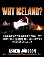 jonsson - why iceland; how one of the world's smallest countries became the meltdown's biggest casualty (2009)