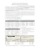 Báo cáo: Một số lưu ý khi sử dụng Ms Project 2007 trong lập tiến độ và quản lý dự án xây dựng