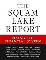 the squam lake report; fixing the financial system (2010)