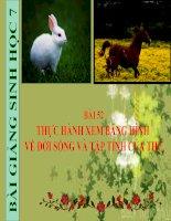 bài giảng sinh học 7 bài 52 thực hành xem băng hình về đời sống và tập tính của thú
