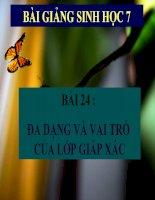 bài giảng sinh học 7 bài 24 đa dạng và vai trò của lớp giáp xác