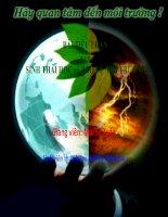 bài tiểu luận môn sinh thái học và bảo vệ môi trường giáo dục môi trường