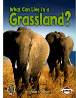 what can live in a grassland