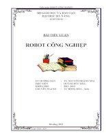 TIỂU LUẬN ROBOT CÔNG NGHIỆP ĐẠI HỌC ĐÀ NẴNG