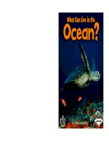 what can live in the ocean